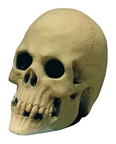 Foam-Filled Rubber Skull Haunted House Decoration