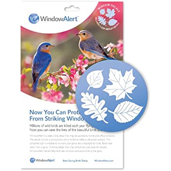 Amazoncom  Window Alert Leaf Medley Decal Pack  Home And - Window alert decals for birds