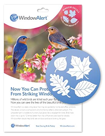 Amazoncom Window Alert Leaf Medley Decal Pack Home And - Window alert decals amazon