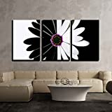 wall26 - 3 Piece Canvas Wall Art - flower black and white - Modern Home Decor Stretched and Framed Ready to Hang - 16''x24''x3 Panels