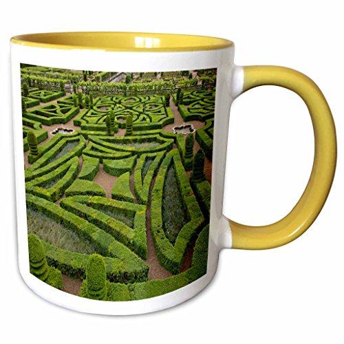 (3dRose 227221_8 France, Loire Valley Gardens of the Chateau de Villandry, Yellow Mug 11 oz)