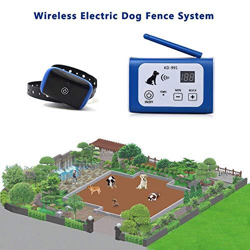 ELLASSY Wireless Dog Fence