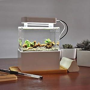WUPIY Acrylic Mini Fish Tank Desktop Mini Aquarium Tank Bowl for Goldfish Betta Small Fish for Office Business Home