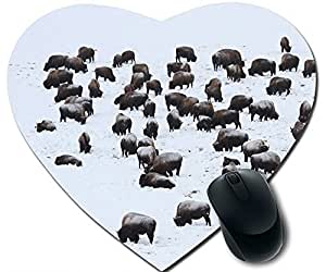 Bison In Hayden Valley Mouse Pad Desktop Mousepad Laptop Mousepads Comfortable Office Of Mouse Pad Mat Cute Gaming Mouse Pad