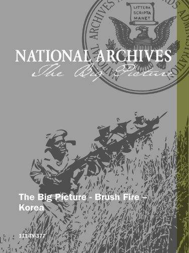 The Big Picture - Brush Fire -- Korea