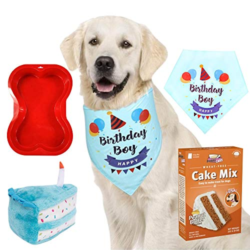 Primo Lines Dog Birthday Party Supplies - Cake Mix and Frosting, Cake Stuffed Toy, Bone Shaped Cake Pan, and Bandana (Best Dog Birthday Cake)