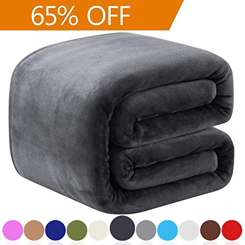 Richave Fleece Queen Size Summer Blanket All Season 350GSM Lightweight Throw for The Bed Extra Soft Brush Fabric Winter Warm Sofa Blanket 90