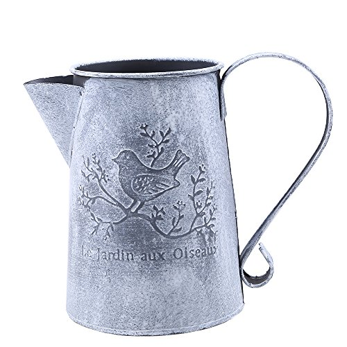 WCIC Metal Watering Can, Vintage Craft Plants Iron Watering Tool with Bird Pattern for Outdoor and Indoor 6.69