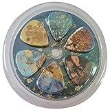 Vincent Van Gogh Almond Blossom Guitar Picks - 12 pc Celluloid Medium - Cool Unique Music Gift