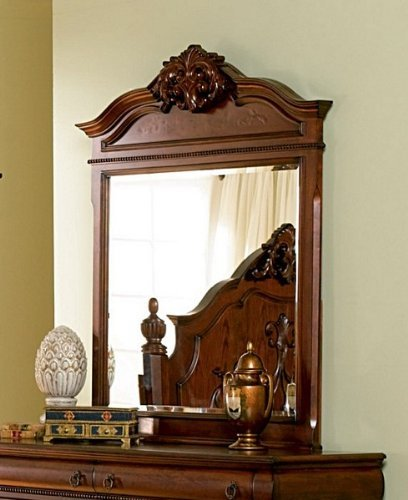 Coaster Home Furnishings 200514 Traditional Mirror, Oak