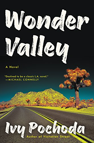 Wonder Valley: A Novel