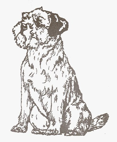 Dog Rubber Stamp - Border Terrier-1E (Size: 1-3/4