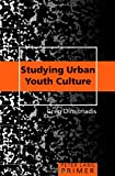 img - for Studying Urban Youth Culture Primer (Peter Lang Primer) book / textbook / text book