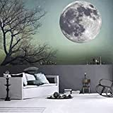 Frame Around Large Bathroom Mirror CaseFan 50cm Glow in Dark Full Moon Light Luminous Wall Stickers Vinyl Removable Art Mural Wallpaper DIY Decals(19.7x19.7 Inches) for Kid Baby Nursery ,Gray