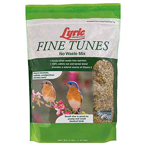 Lyric 2647439 Fine Tunes No Waste Mix -  5 lb.
