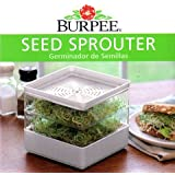 Burpee Seed Sprouter + 3 Types Sprouting Seeds