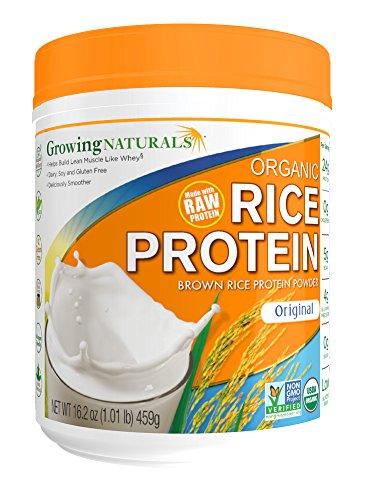 Growing Naturals Organic Protein Original