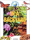 In a Backyard (Small Worlds)