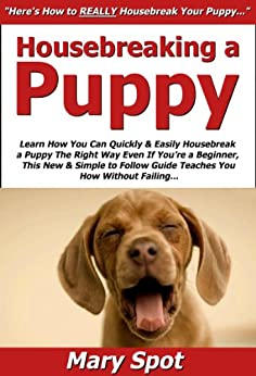how to house break your puppy