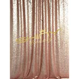 ShiDianYi 4FTX6FT-Blush-SEQUIN PHOTO BACKDROP, Wedding Photo Booth,Photography Background (Blush)