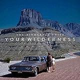 Your Wilderness ( Vinyl Lp )