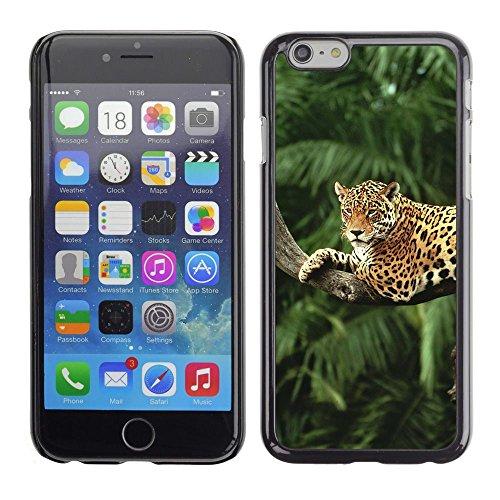 TopCaseStore / caoutchouc Hard Case Housse de protection la Peau - Leopard Tree Jungle Rainforest Trees Big Cat - Apple iPhone 6 Plus 5.5