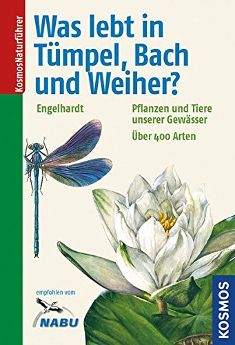 Was lebt in Tümpel, Bach und Weiher?: Pflanzen und Tiere unserer Gewässer