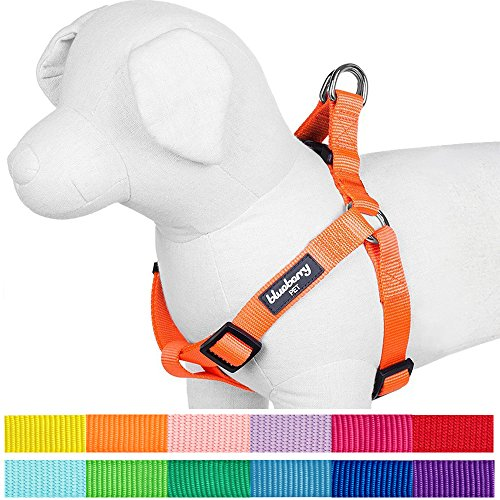 "Blueberry Pet 12 Colors Step-in Classic Dog Harness, Chest Girth 19.5"" - 25.5"", Florence Orange, S/M, Adjustable Harnesses for Dogs"