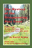 The Mystery of the Dissapearing Pine Trees: Featuring Orvie, the boy who could see into the past (The Orvie Mystery Series)