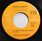 DAVID SPINOZZA 45 RPM A PAGE TORN OUT OF ME / BIG STAR