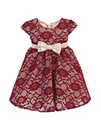 Sweet Kids Baby Girls Burgundy Champagne Floral Lace Christmas Dress 6-24M