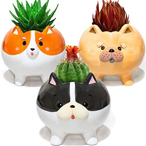 Succulent Pots with Drainage - Small Succulent Planter Handmade Original Ceramic Plant Pot Indoor - Mini Pots for Plants Flower Cactus - Home Office Kitchen Desk Garden Decor Dog Lover Gifts for Women