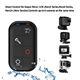 iafer WiFi Waterproof Smart Remote Control with Charing Cable and Wrist Strap for Gopro Hero+ LCD - GoPro Hero5 Session - Hero4 Silver - Hero4 Black - Hero3+ - Hero Session (Black)