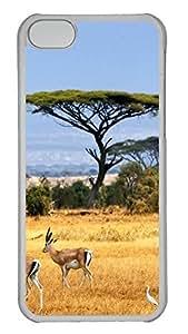 SUN VIGOR Iphone 5C Case, Asia-At-Night-Earth-Space-Dark Fashion Design Protective Hard Clear Phone Cover Skin Case For iPhone 5C +Screen Protector for Apple 5C