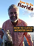 How to Catch Monster Bass
