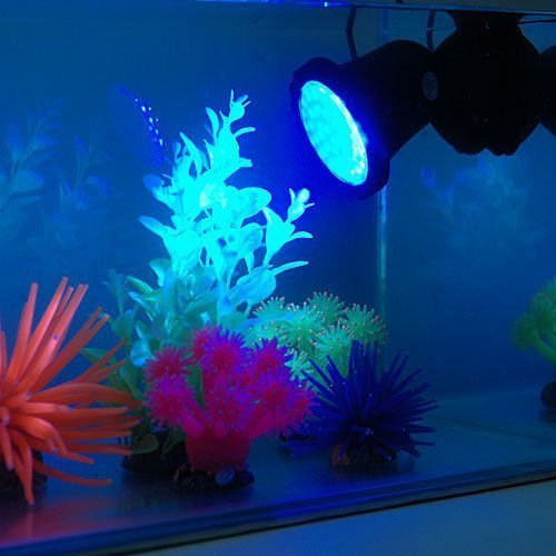Deckey Waterproof 36 LED Submersible Spotlight Landscape Lamp Aquarium Fish Tank, Garden Fountain, Pond Pool (3 Pack) by Deckey (Image #3)
