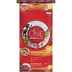 Purina ONE SmartBlend Chicken & Rice Formula Dry Dog Food - (1) 40 lb. Bag