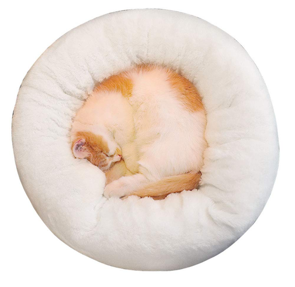 White S White S Basde Pet Pets Beds Indoor for Large cats & small dogs,All the kinds of Small pets can use