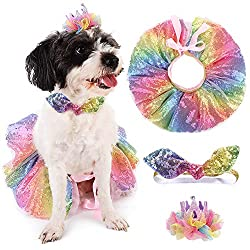 Sequin Dog Dress Outfits And Accessories for Birthday