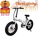 ECOTRIC Fat Tire Folding Electric Bike Beach Snow Bicycle 20″ Ebike 500W Electric Moped Electric Mountain Bicycles 36V 12Ah Removable Lithium Battery
