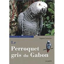 Perroquet gris du Gabon (Le)