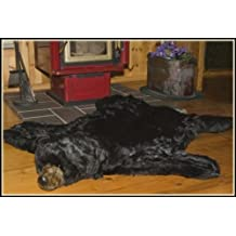 "Queens of Christmas WL-40240-DZ Black Bear Decorative Rug, 60"" x 60"""