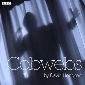 Cobwebs Performance