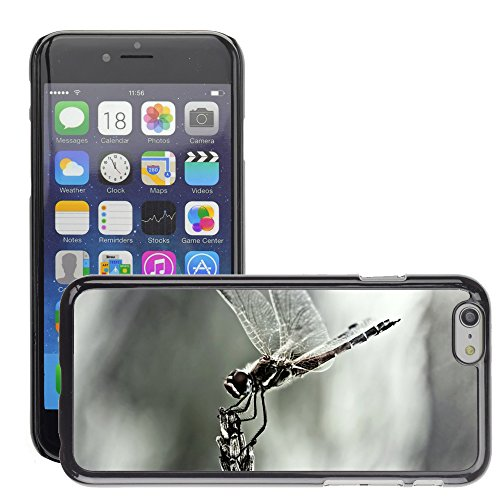 "Just Phone Cases Hard plastica indietro Case Custodie Cover pelle protettiva Per // M00128149 Dragonfly Aile d'insecte Fermer // Apple iPhone 6 PLUS 5.5"""