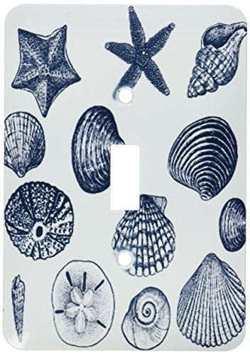 (3dRose lsp_155830_1 Blue Sea Shells Nautical Beach Theme Ocean Art Single Toggle Switch)