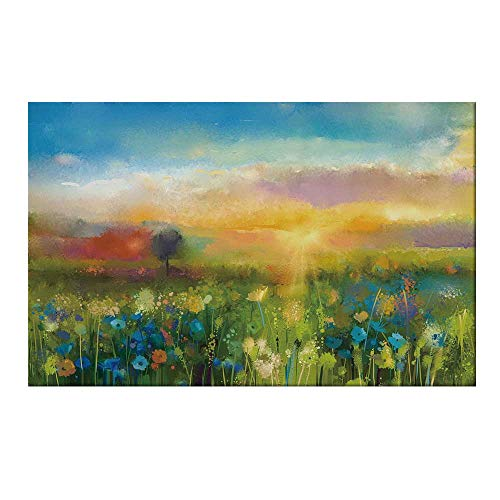 YOLIYANA Art Durable Door Mat,Dandelion Cornflower Daisy Blooms in The Meadow Field Before Sunset Spring Landscape for Home Office,17.7