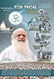 Rishi Prasad: more info