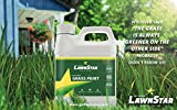 LawnStar Grass Paint, 32 fl. oz. - Makes Grass Green Again - The Non-Toxic Solution for Water Restrictions & Drought - Skyrocket Your Curb Appeal Today! (Covers 500-1,000 sq. ft.)