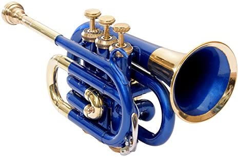 BEST QUILITY Nasir Ali Ptr-10 Pocket Trumpet B-Flat Blue