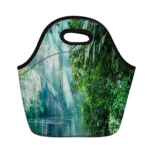 Semtomn Lunch Tote Bag Tortuguero National Park Rainforest Costa Rica Caribbean Coast Central Reusable Neoprene Insulated Thermal Outdoor Picnic Lunchbox for Men - Tortuguero National Park
